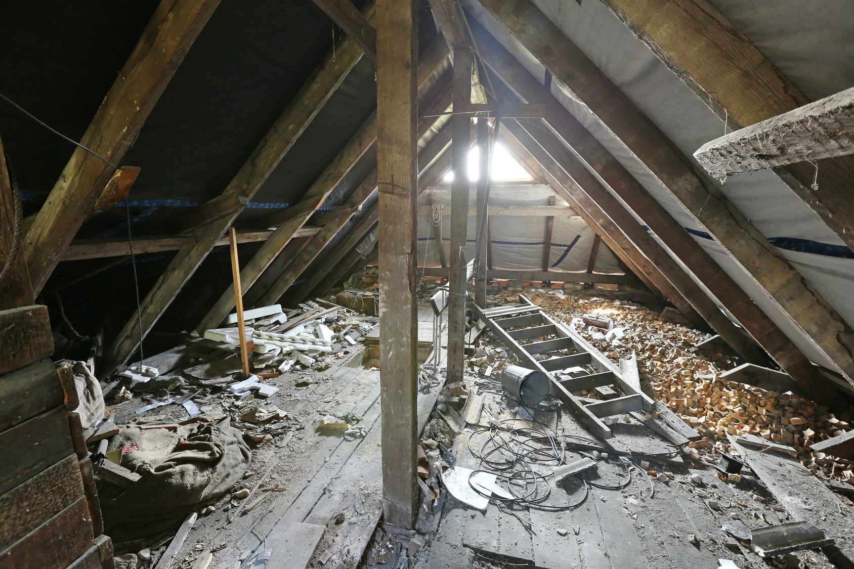 attic cleaning after rodent